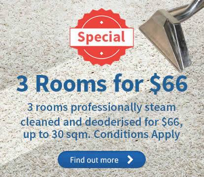 Carpet Cleaning Melbourne Call 9826 1111 Cheap As Chips