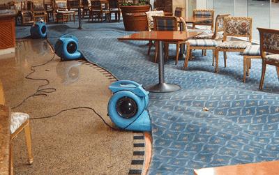 Flood Damage Carpets