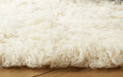 Rugs & Mats Cleaning Services Melbourne