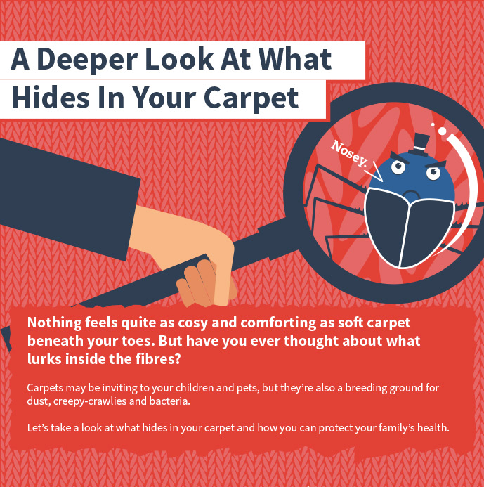 A deeper look at your carpet preview