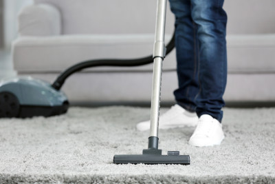 House Dust Mites And What You Need To Know Cheap As
